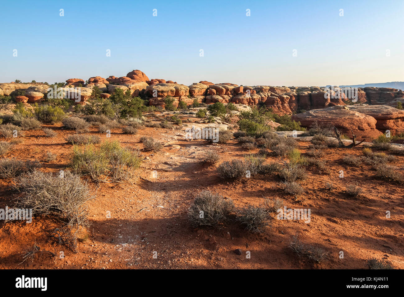 Chesler Park trail in needles district after sunrise, Canyonlands - Stock Image