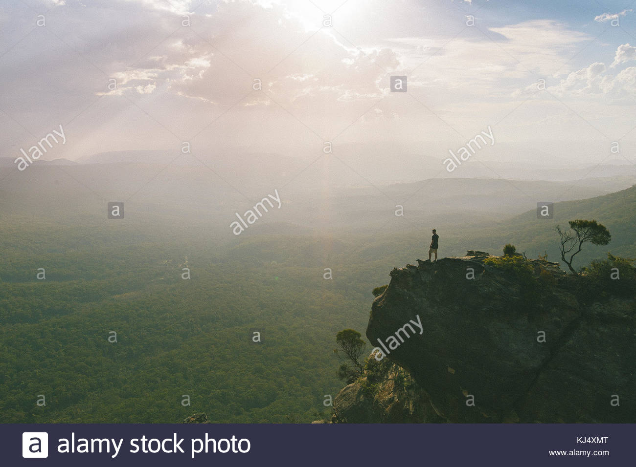 Man on cliff overlooking the Blue Mountains - Stock Image