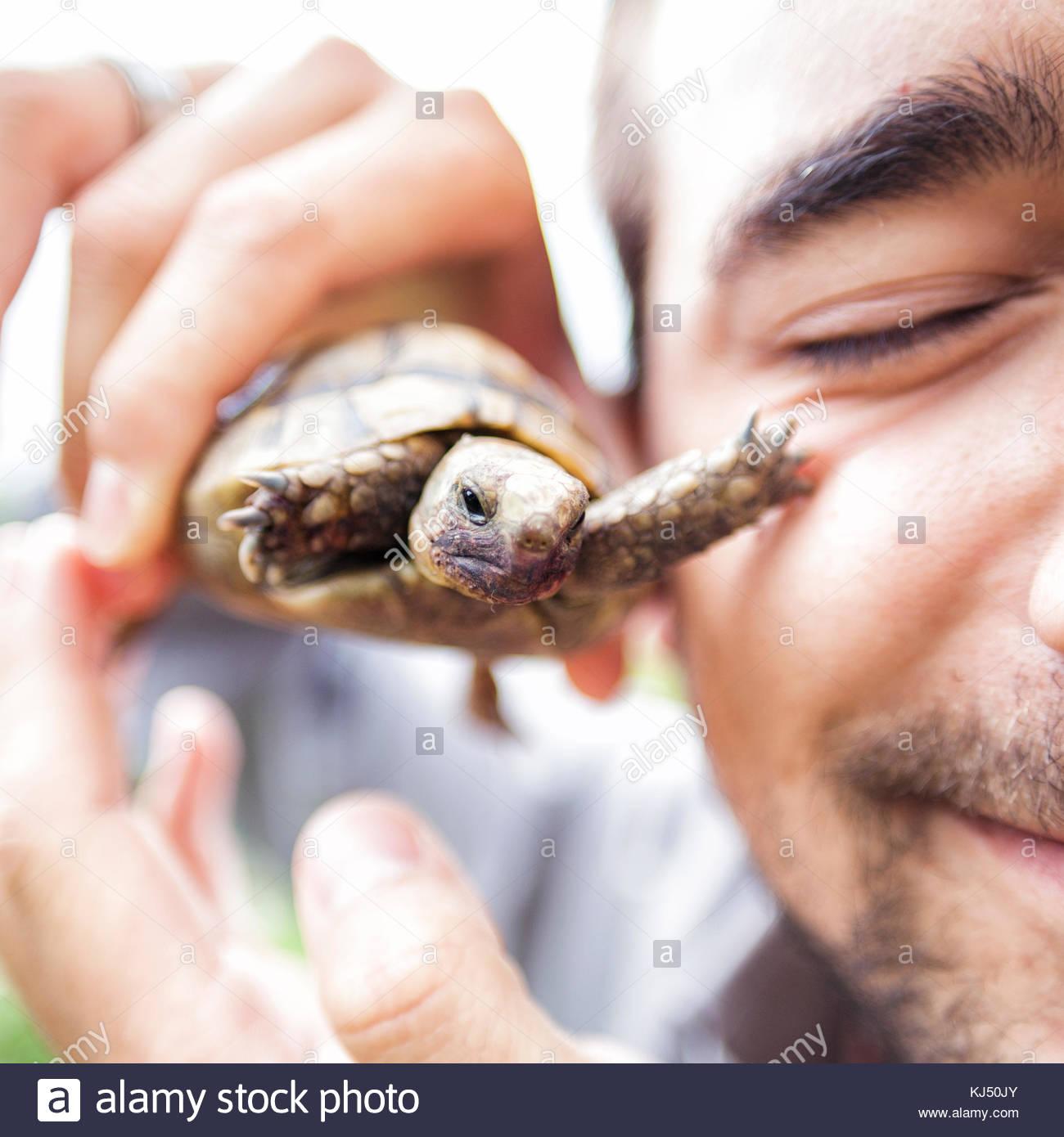 Man holding turtle - Stock Image