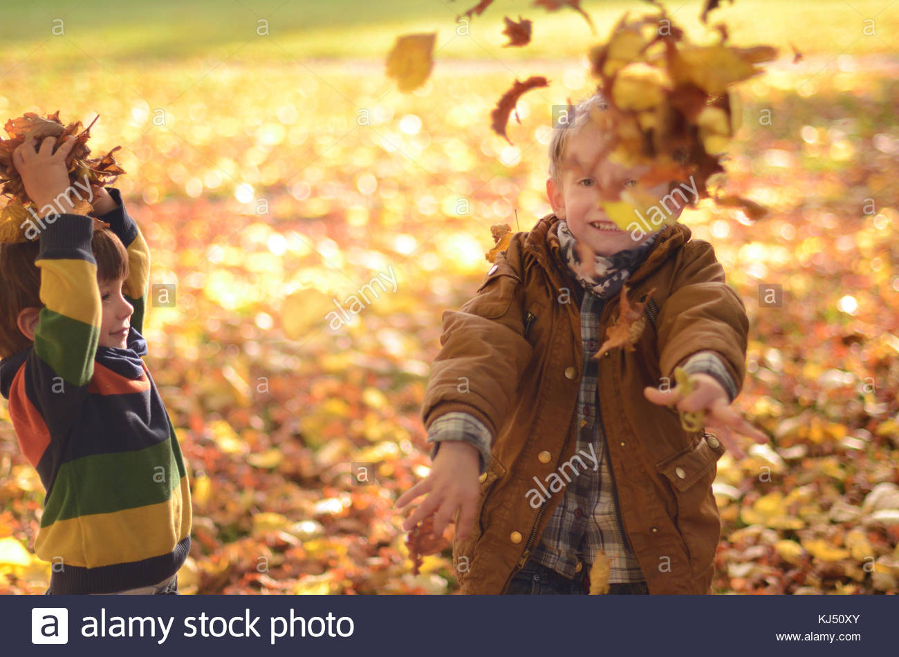 Children playing with leafs - Stock Image