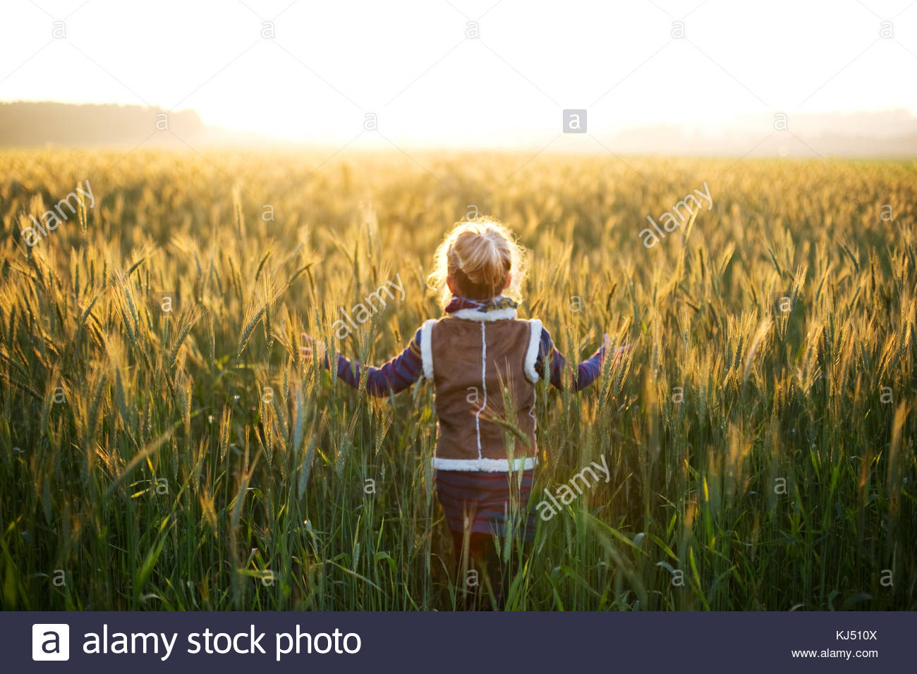 Laughing little girls in a bright meadow - Stock Image