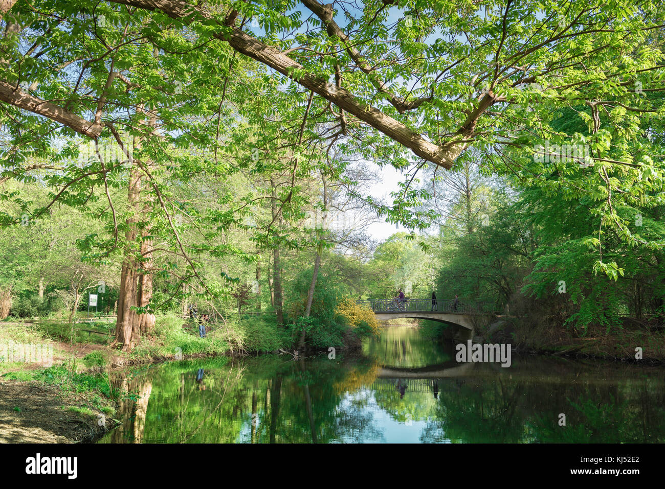 Tiergarten Berlin, a lake in the centre of the Tiergarten park at spring time, Berlin, Germany. - Stock Image