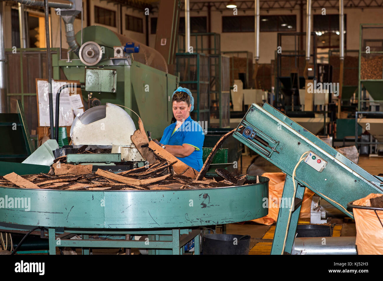 Female worker operating a cutting machine for cork oak bark, Cork factory Nova Cortica, Sao Bras de Alportel, Algarve, - Stock Image