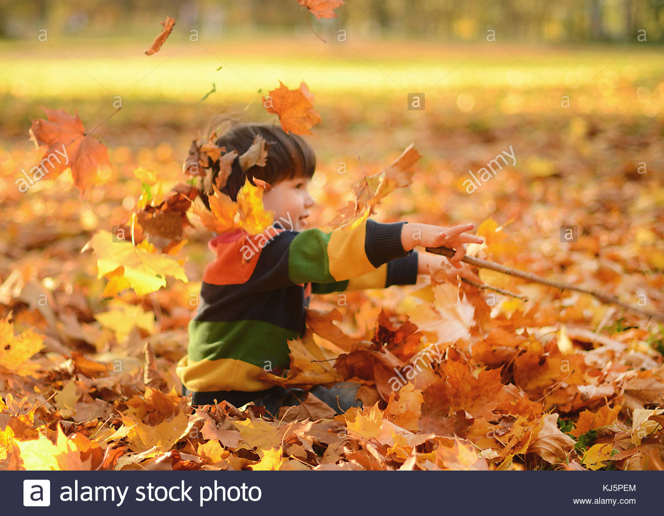 Toddler playing with leafs - Stock Image