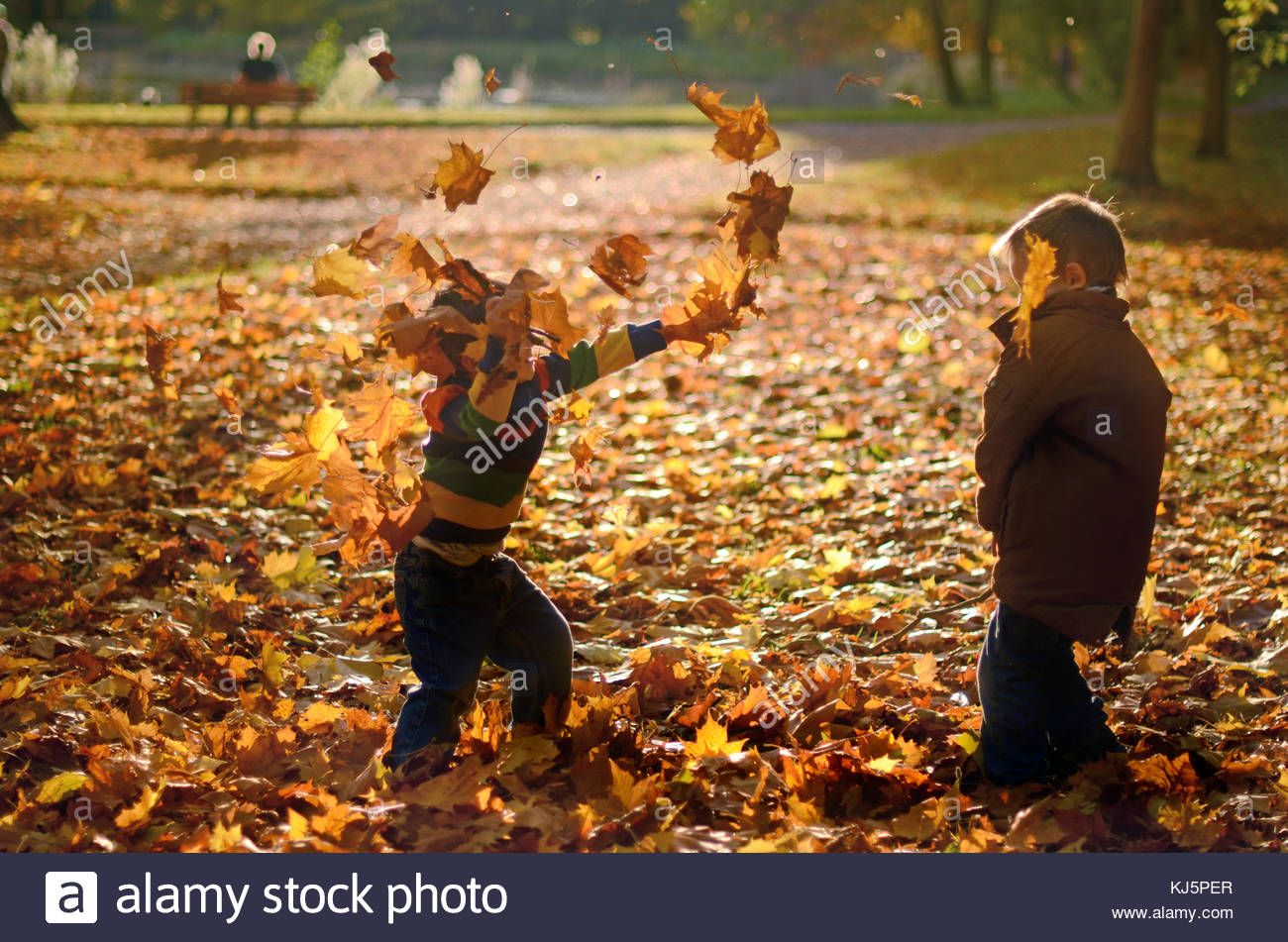 Toddlers playing with leafs - Stock Image