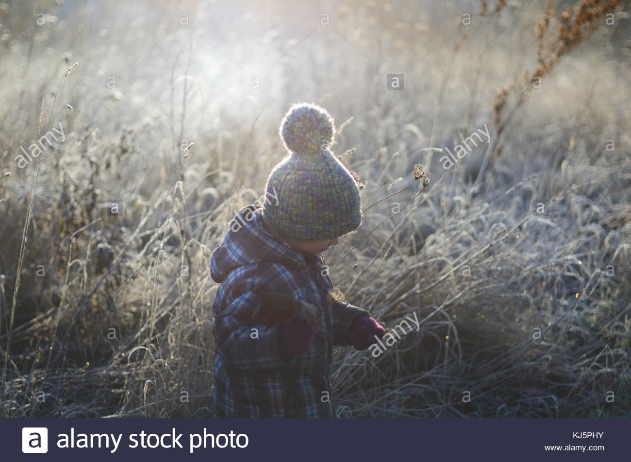 Toddler in meadow - Stock Image