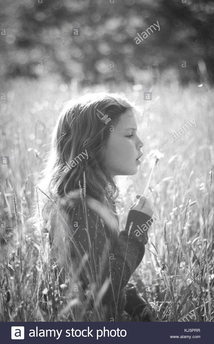 Little girl in a field blowing on a dandelion Stock Photo