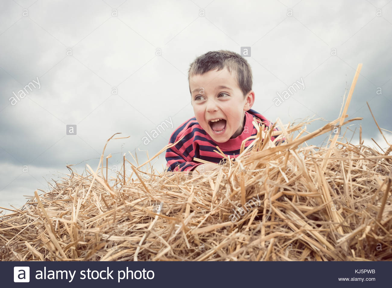 Playful boy on the top of a haystack - Stock Image