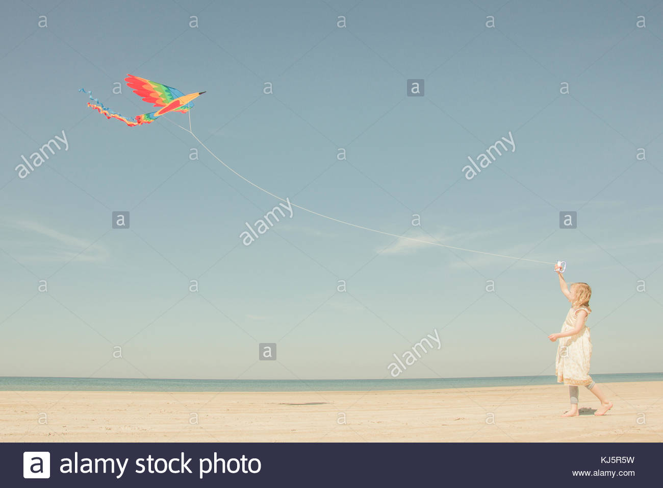 Little girl playing with the kite - Stock Image