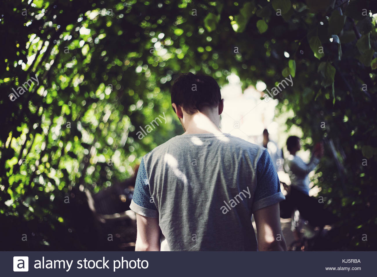 man dappled with light and shadow - Stock Image