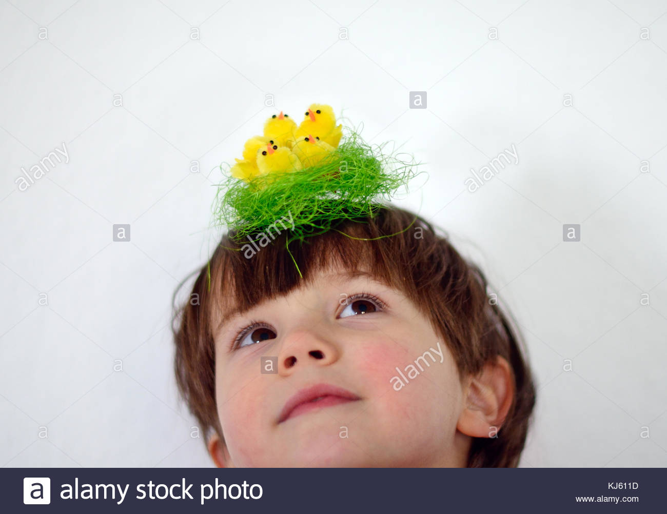 Boy with tiny easter chickens - Stock Image