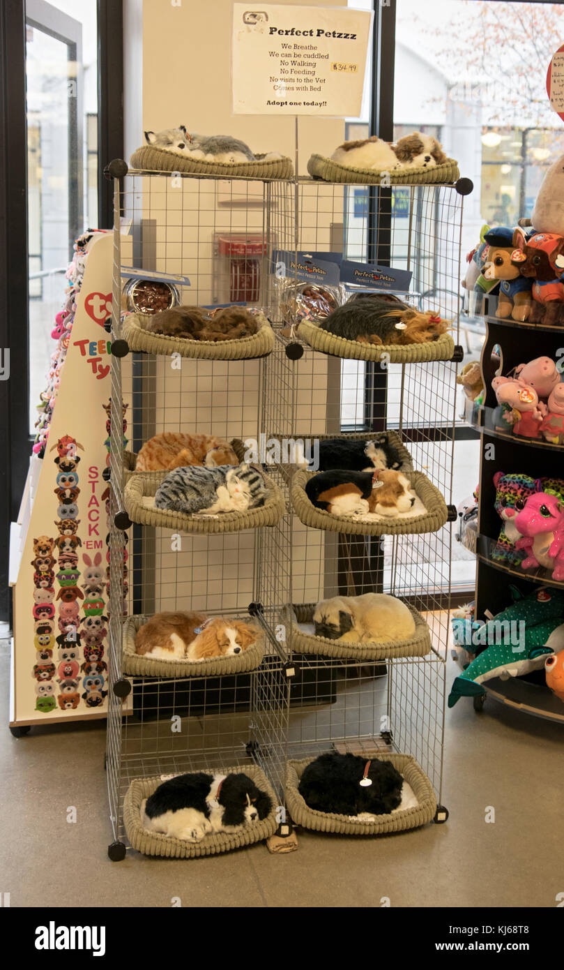 PERFECT PETZZZ, imitation cats and dogs for sale at Gizmos & Gadgets at the Tanger Outlet Mall in Deer Park, - Stock Image