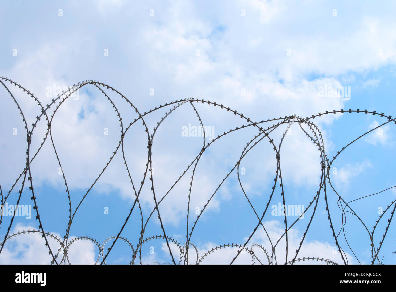Barbed Wire Circle Stock Photos & Barbed Wire Circle Stock Images ...