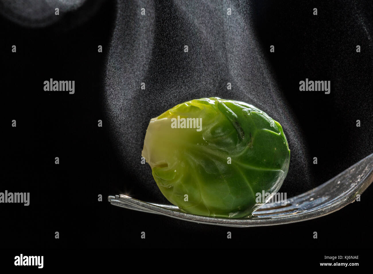 Just cooked steaming brussels sprout. - Stock Image