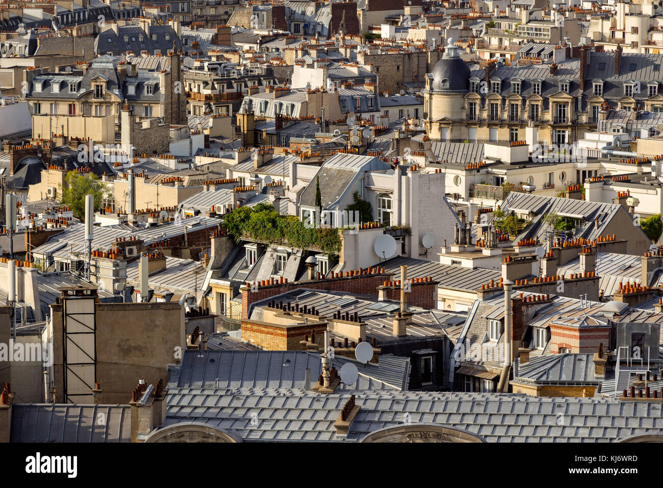 Paris rooftops in summer with their roof gardens, mansard and French roofs. 17th Arrondissement of Paris, France - Stock Image