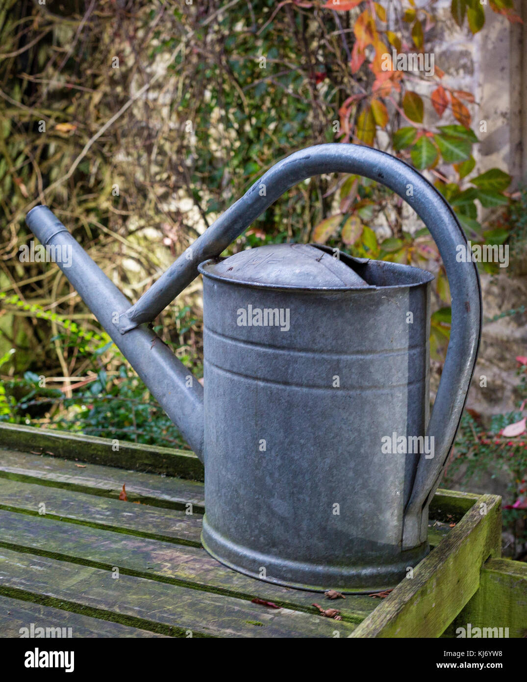 Old fashioned galvanized steel metal watering can Stock Photo