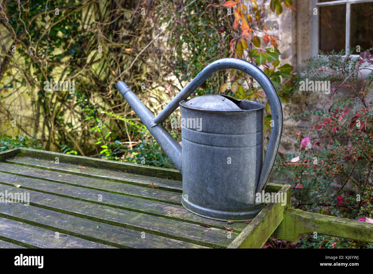 Old fashioned galvanized steel metal watering can - Stock Image