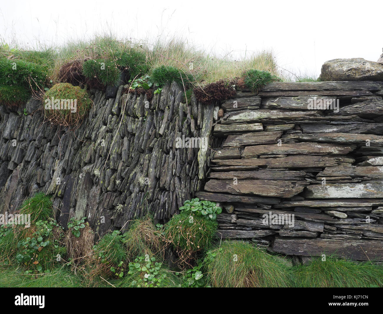 Rugged and beautiful Pembrokeshire stone walls along the coast path in the Pembrokeshire National Park, Wales UK - Stock Image
