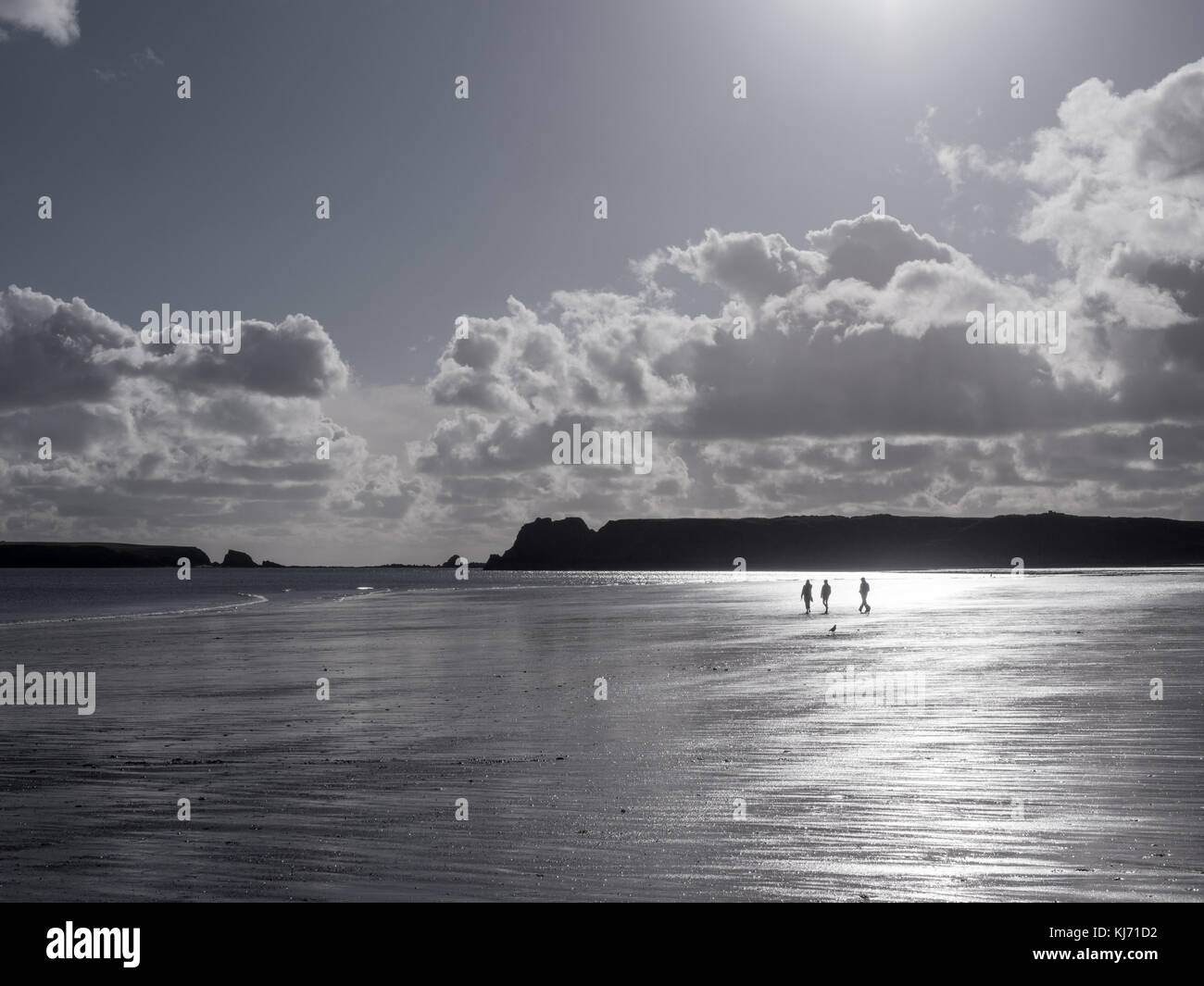 Three people and a dog on a beautiful day walking in the wide open space of a beach at low tide. South Beach Tenby, - Stock Image