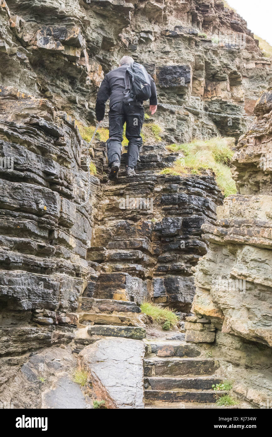 walker using chain handrail and rock steps to climb up the Brough of Deerness, Orkney, Scotland, UK - Stock Image