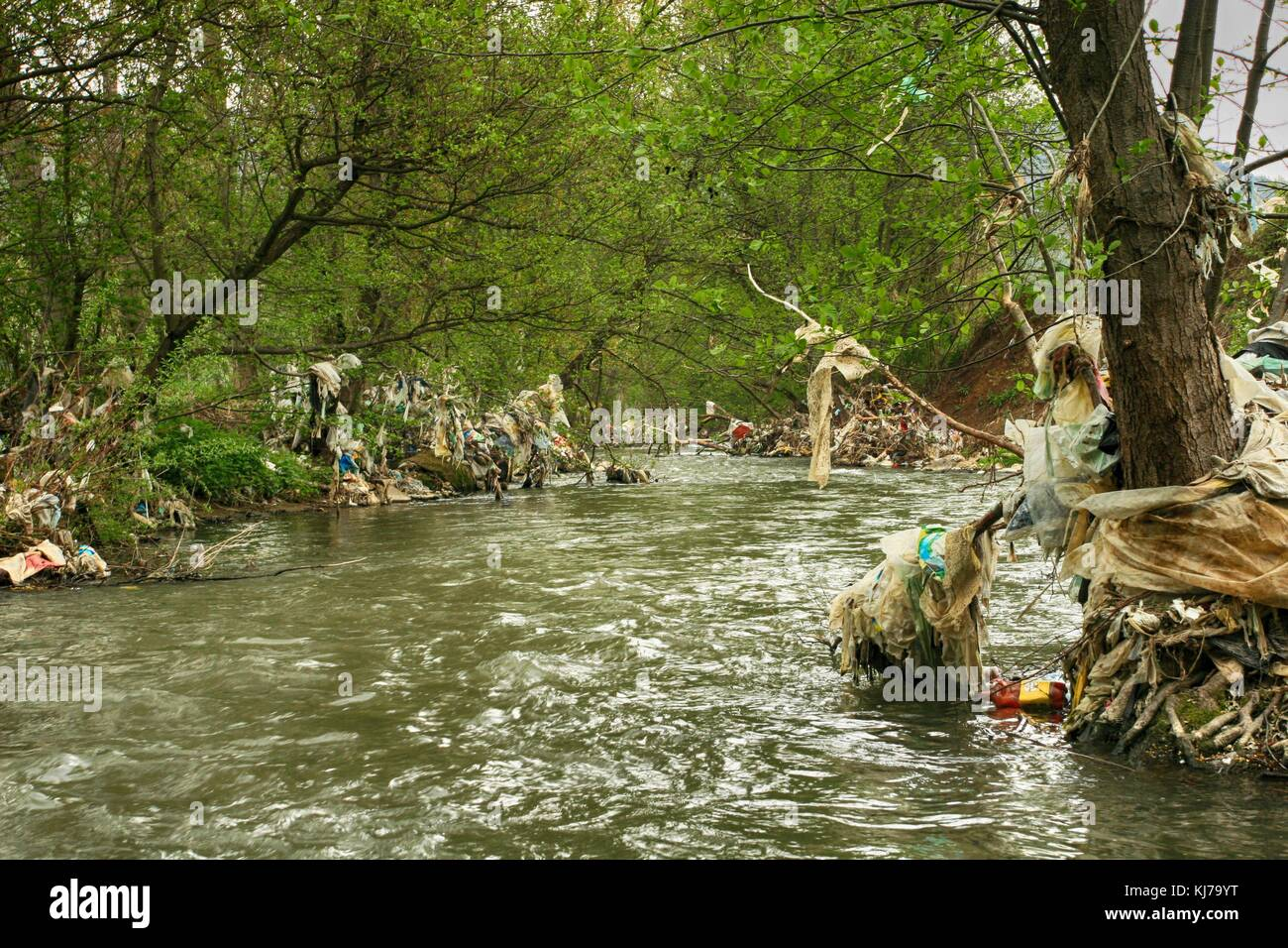 Plastic polluted Raska River in Serbia, Europe - Stock Image