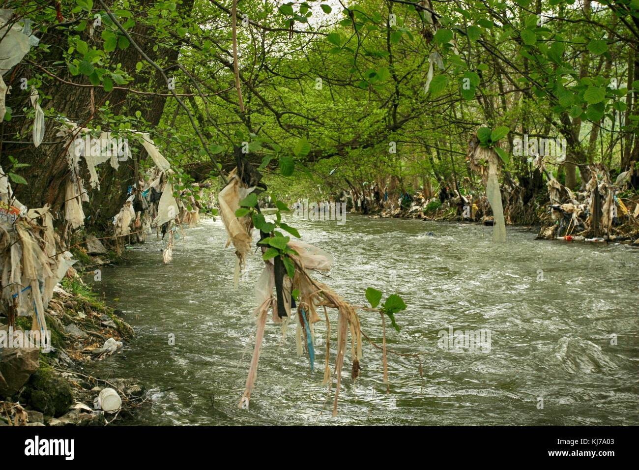 Plastic polluted Raska River in Serbia, Europe - Stock Image