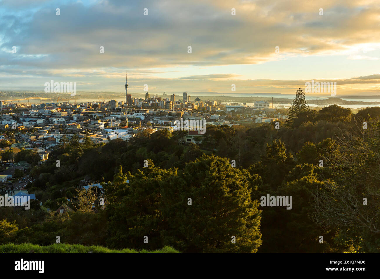Auckland Central Business District. A view from Mt Eden - Stock Image
