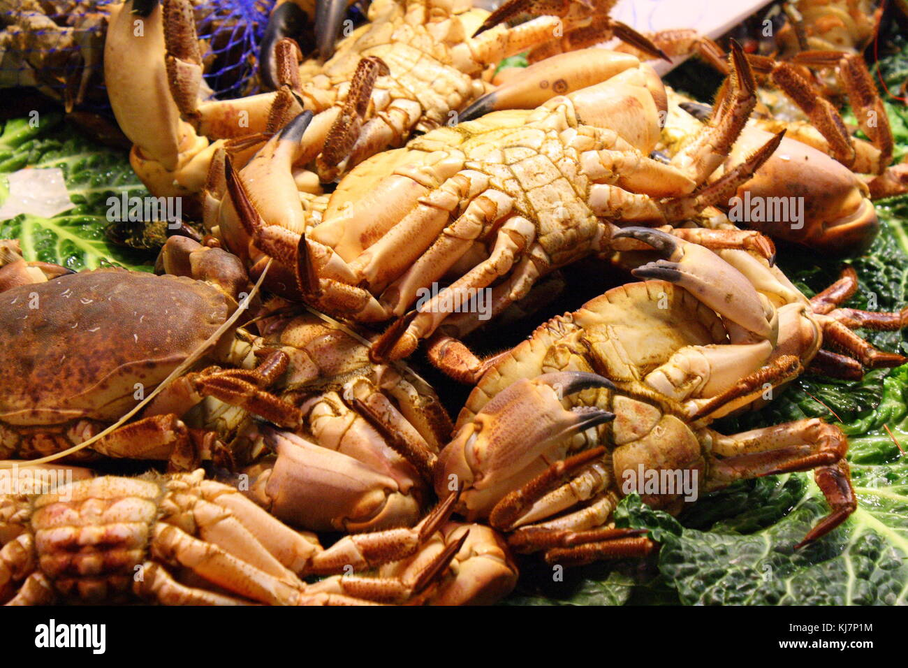A closeup of crabs on display at the seaside fish market. - Stock Image
