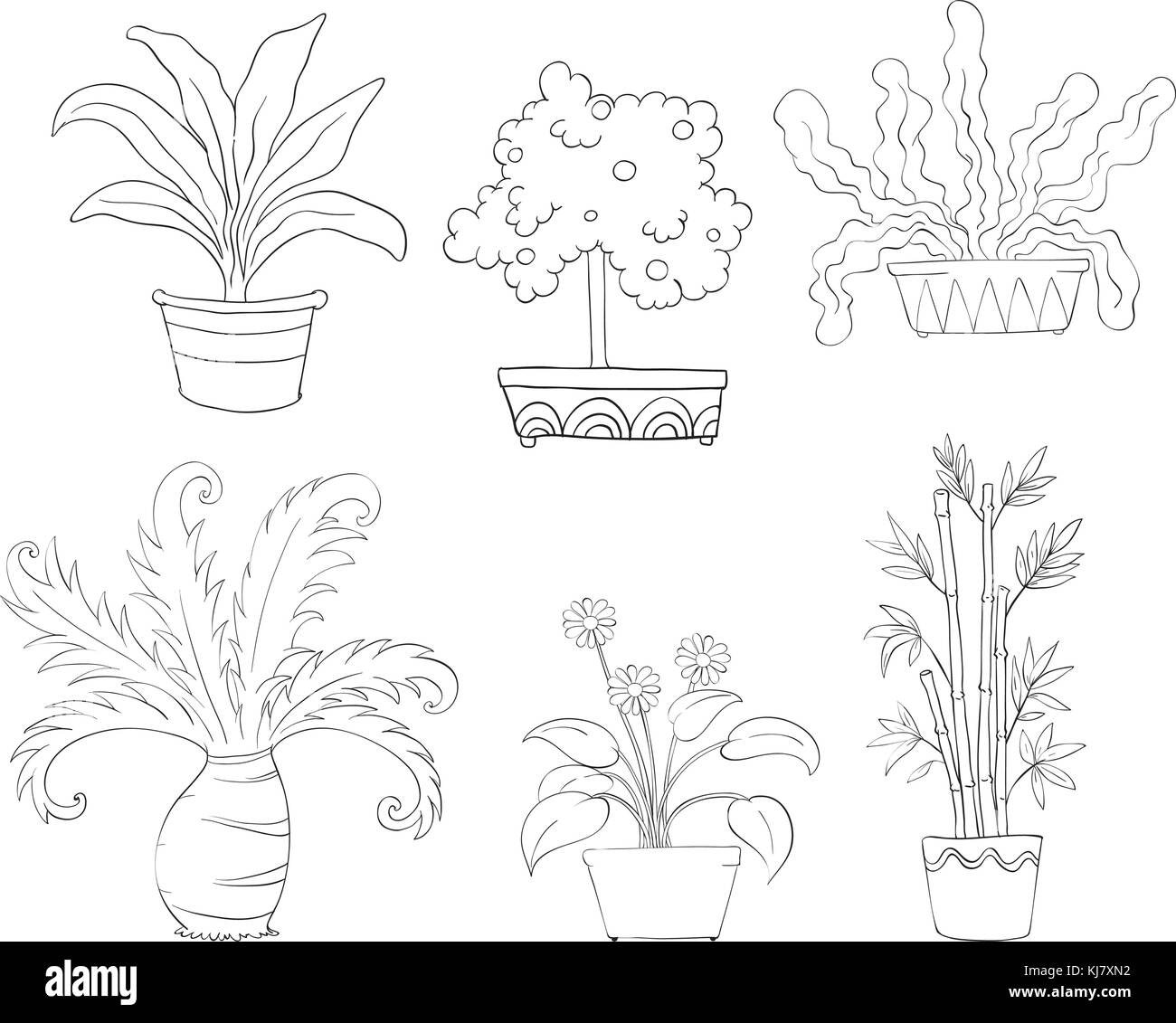 Illustration Of The Six Different Kinds Of Plants On A White Stock