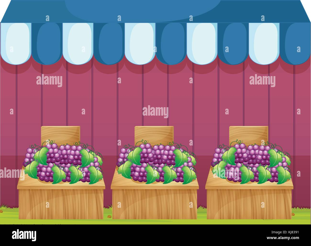 Illustration of the fruit stands with grapes on a white background Stock Vector