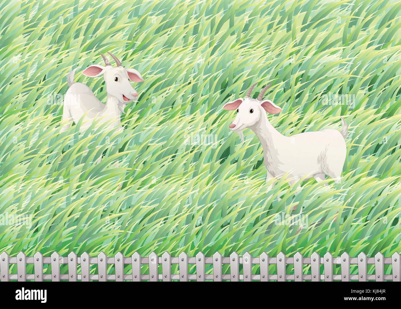 Illustration of the two goats in the farm - Stock Vector
