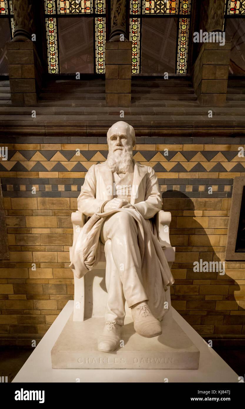 Charles Darwin statue at the Natural History Museum, London, UK. - Stock Image