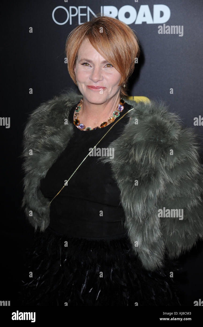 NEW YORK, NY - NOVEMBER 14: Shawn Colvin attends as Open Road with Men's Fitness host the premiere of 'Bleed - Stock Image