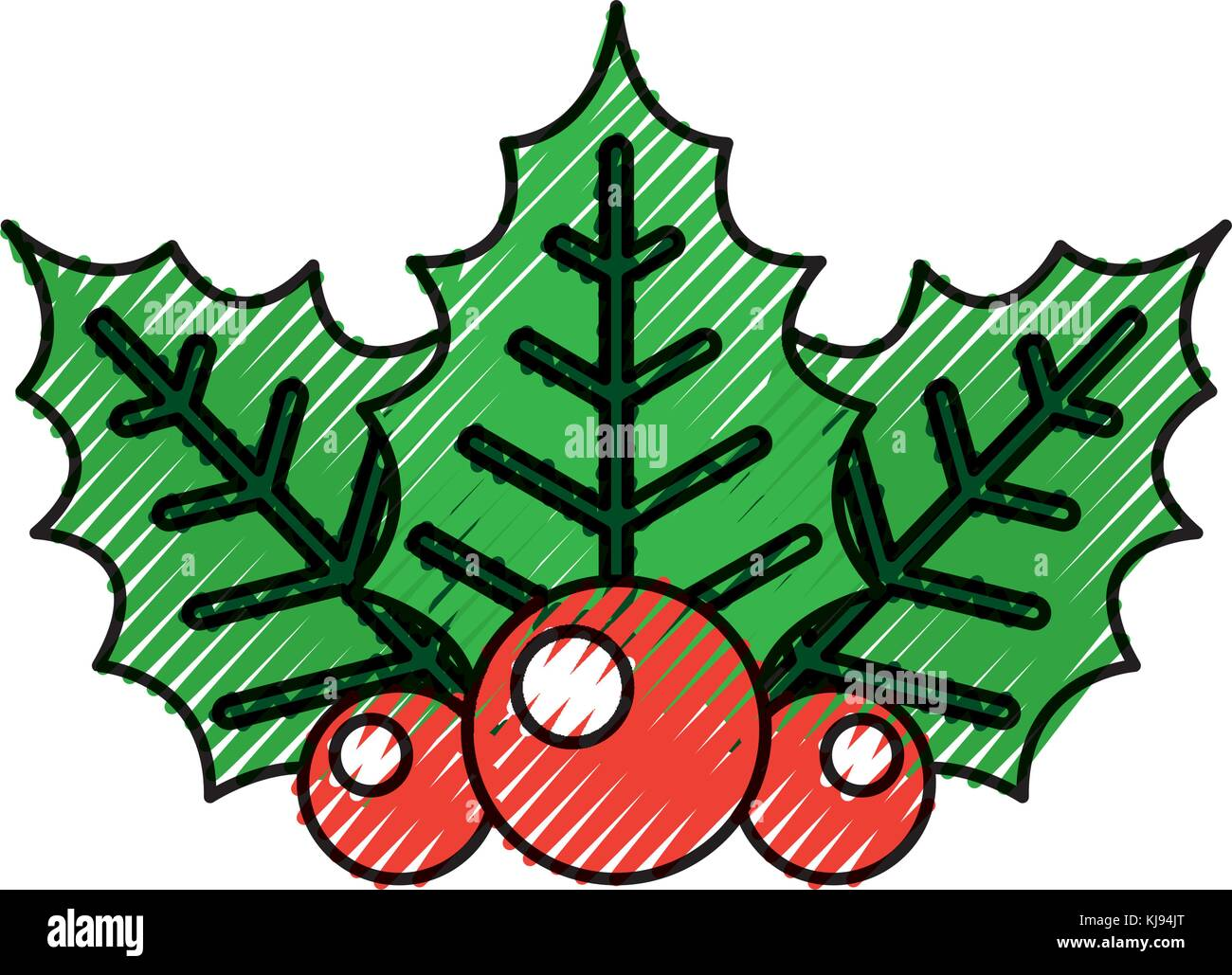 twig of christmas holly with leaves berries on white background - Stock Vector