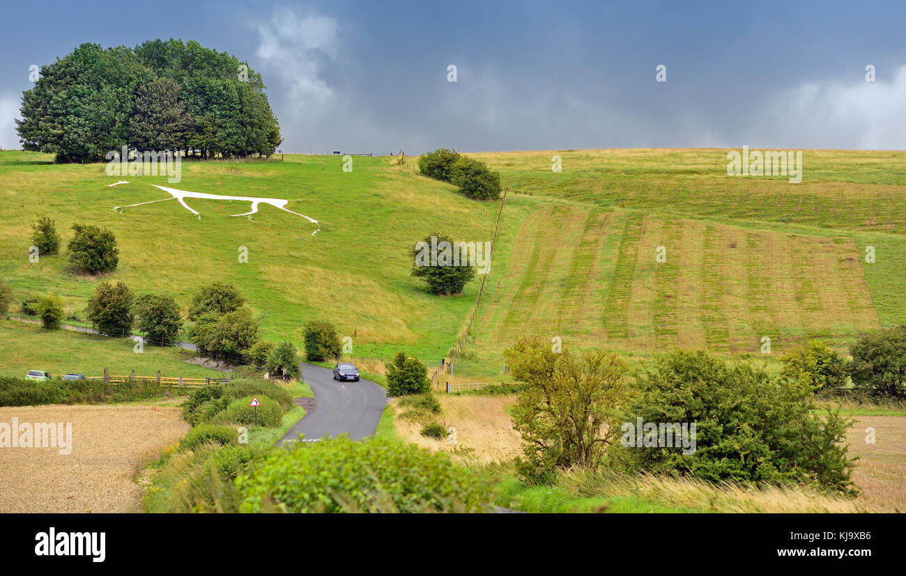 Hackpen Hill white horse and the Ridgeway. Stock Photo