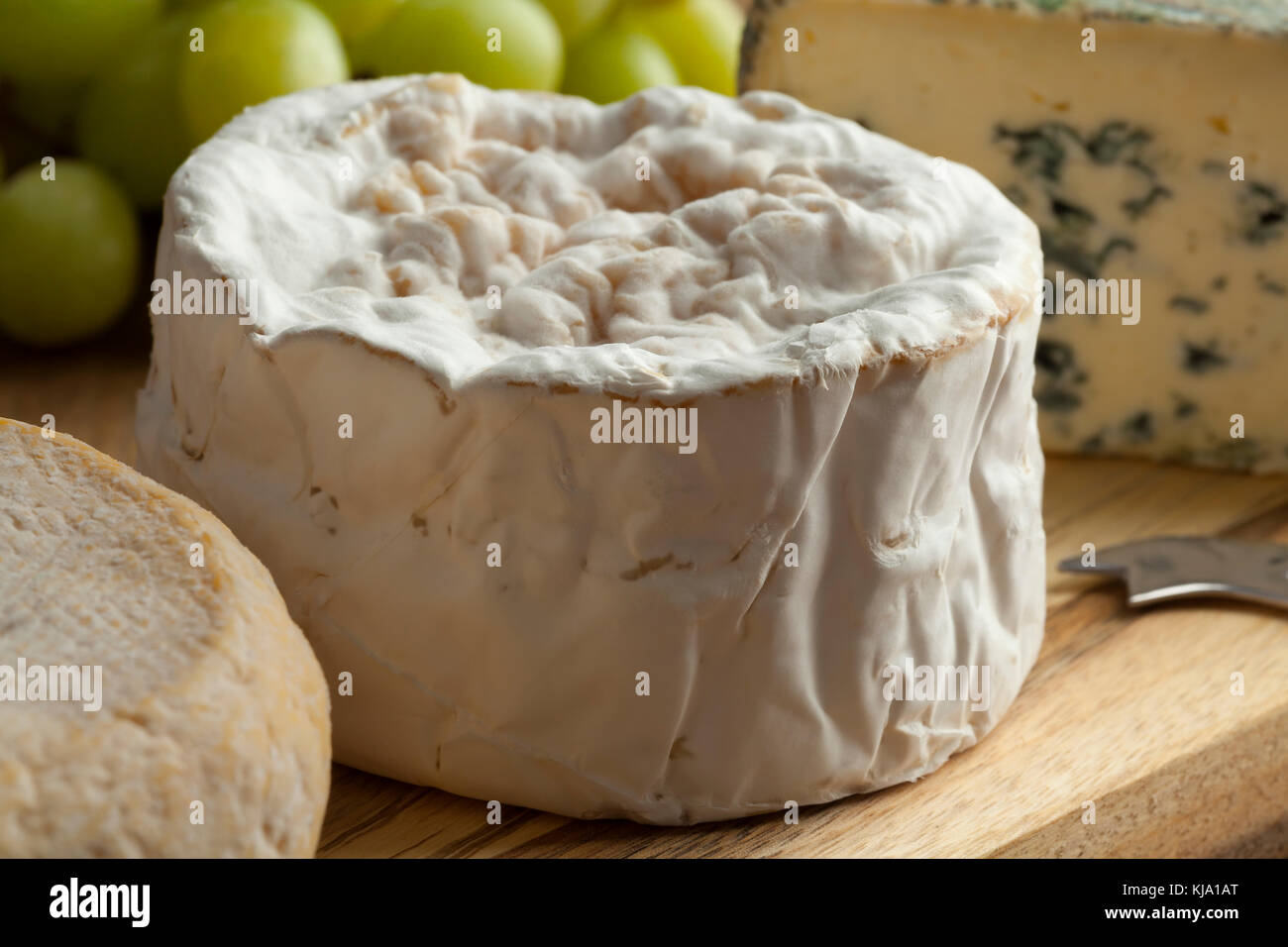 Small camembert cheese close up on a french cheese board - Stock Image