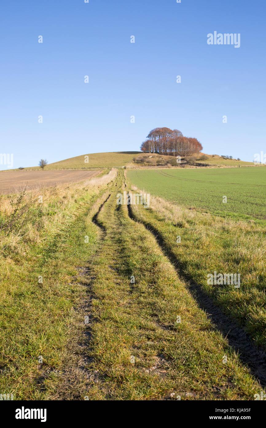 Chalk landscape in winter, Woodborough Hill, Vale of Pewsey, Wiltshire, England, UK - Stock Image