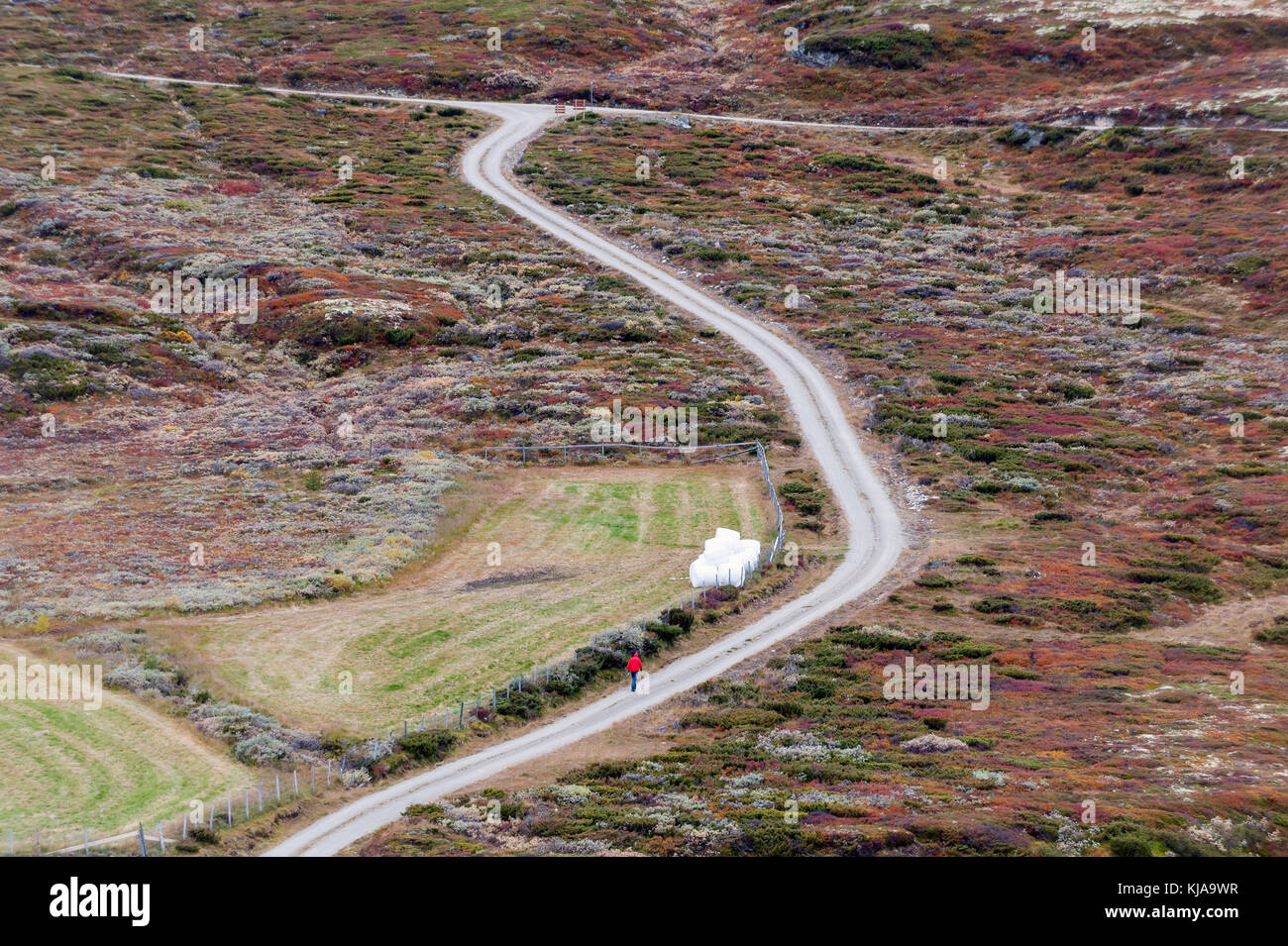 Walking a rural road. Rondane, Norway Stock Photo