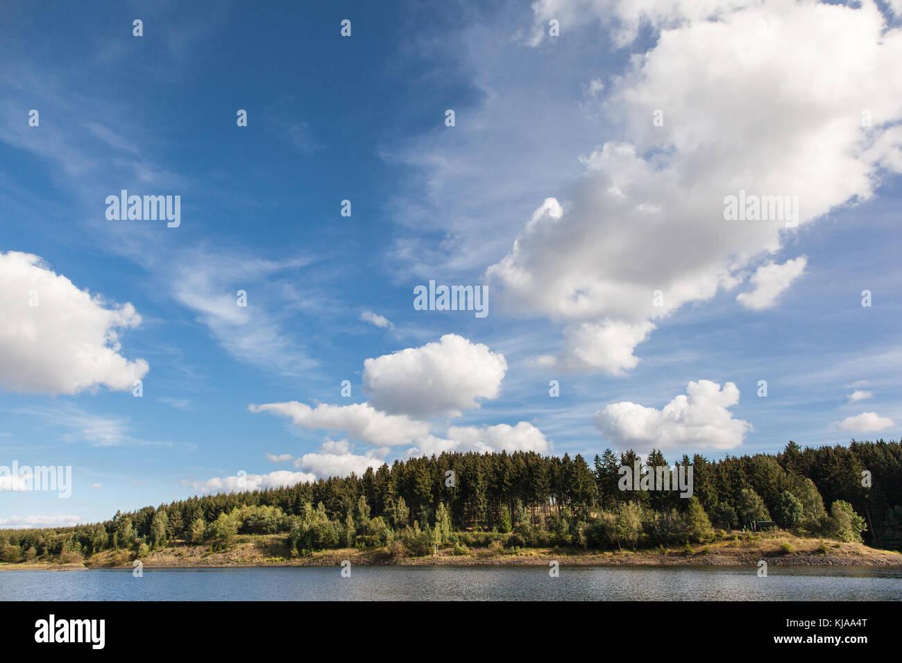 Teufelsteich bei Harzgerode im Harz - Stock Image