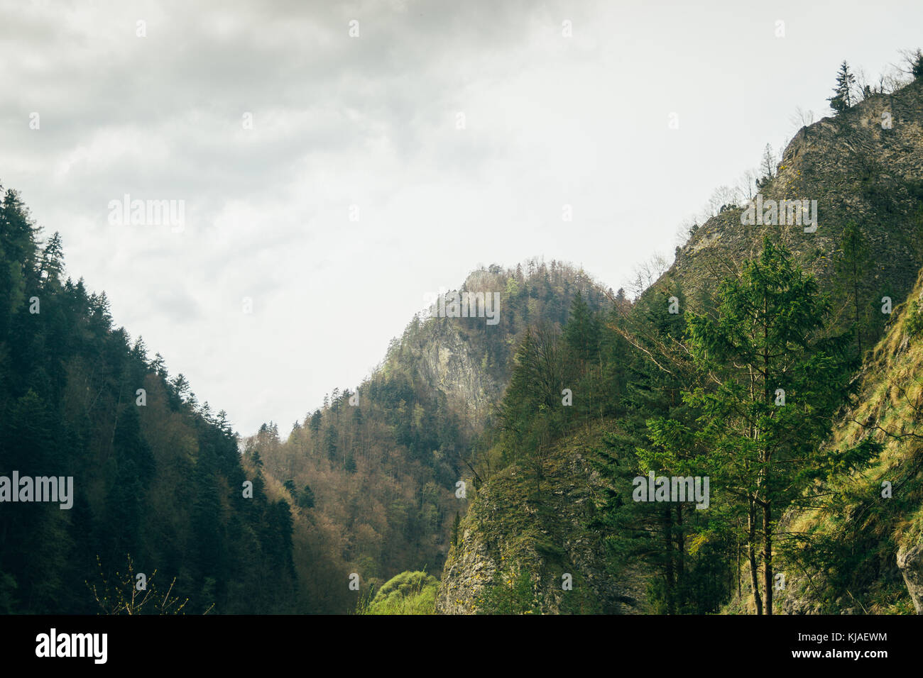 Pieniny mountains in spring - Stock Image