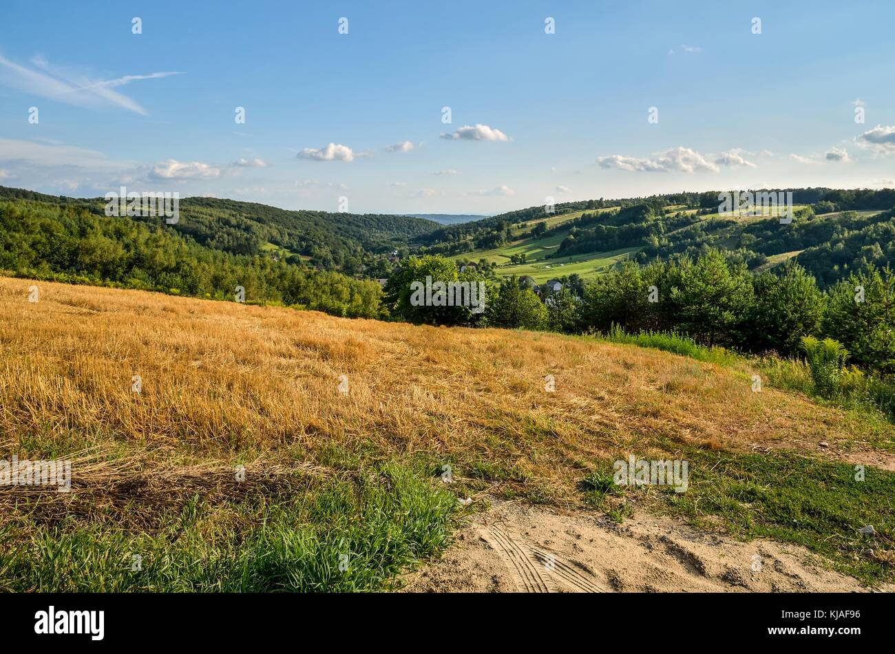 Rural summer landscape. A village in a beautiful Jurassic valley in Poland. - Stock Image
