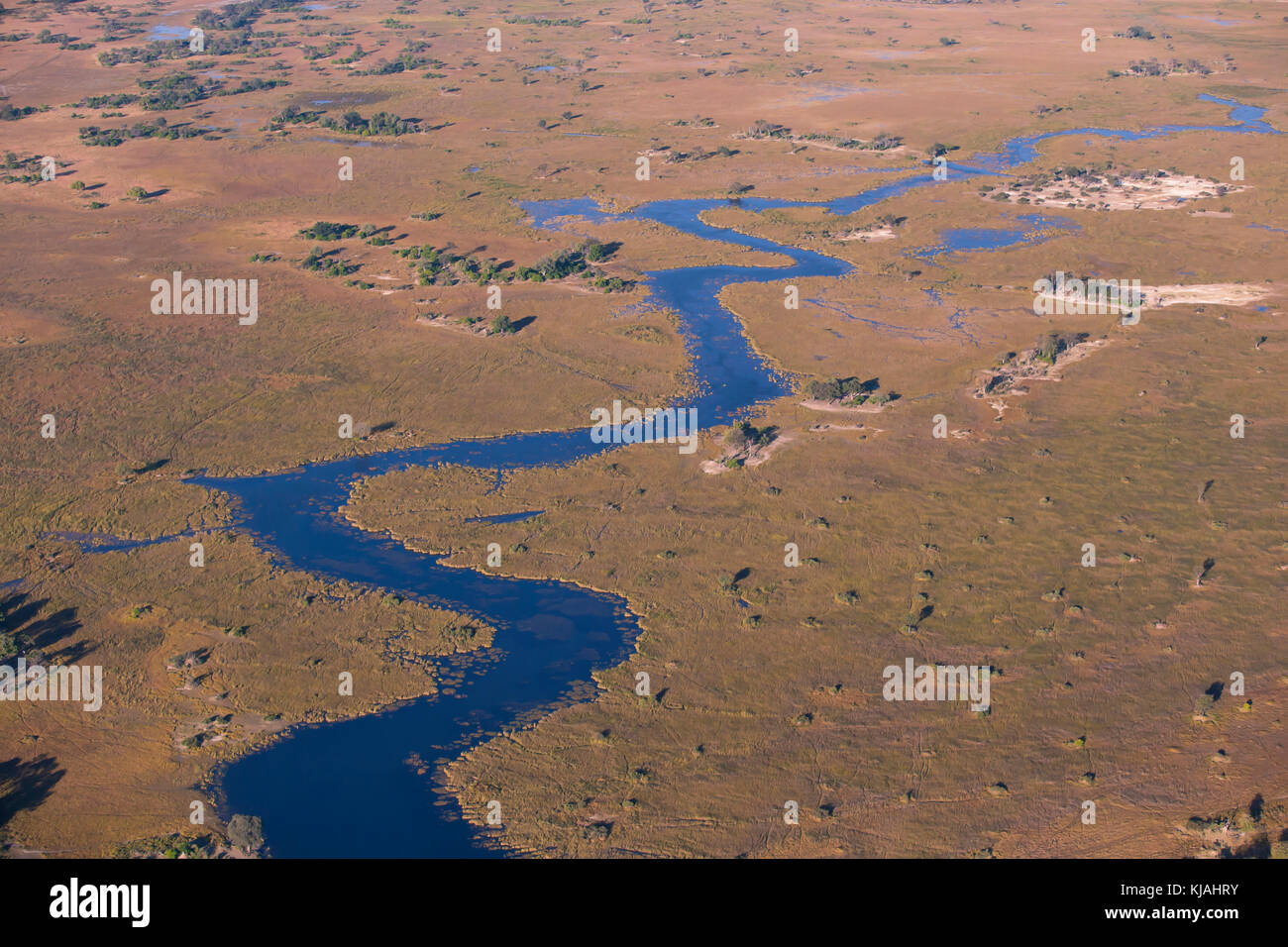 Arial view of the freshwater marshland of the Ocavango - Stock Image