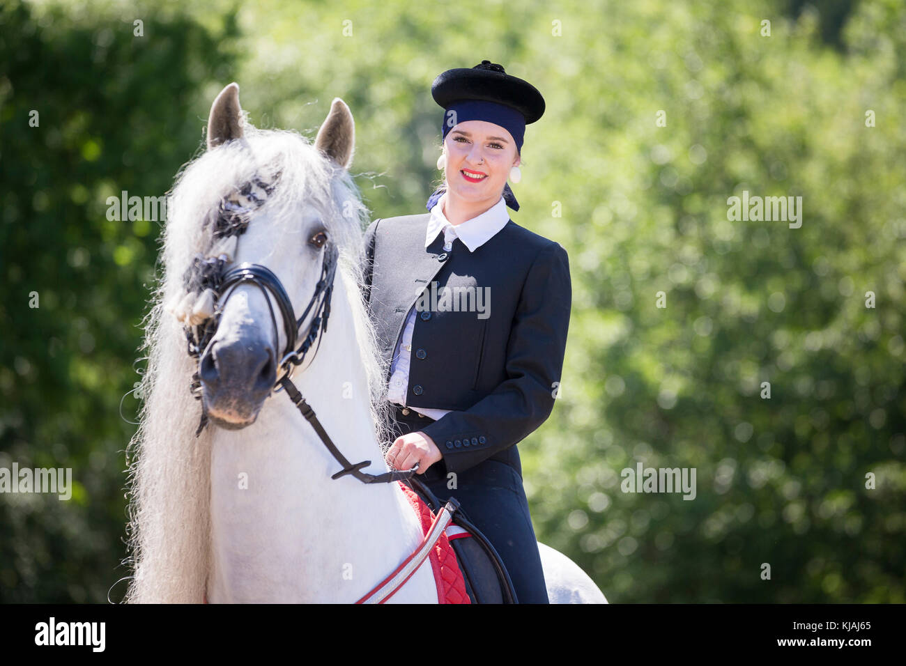 Pure Spanish Horse, Andalusian. Rider in traditional dress on gray stallion on a riding place. Austria - Stock Image