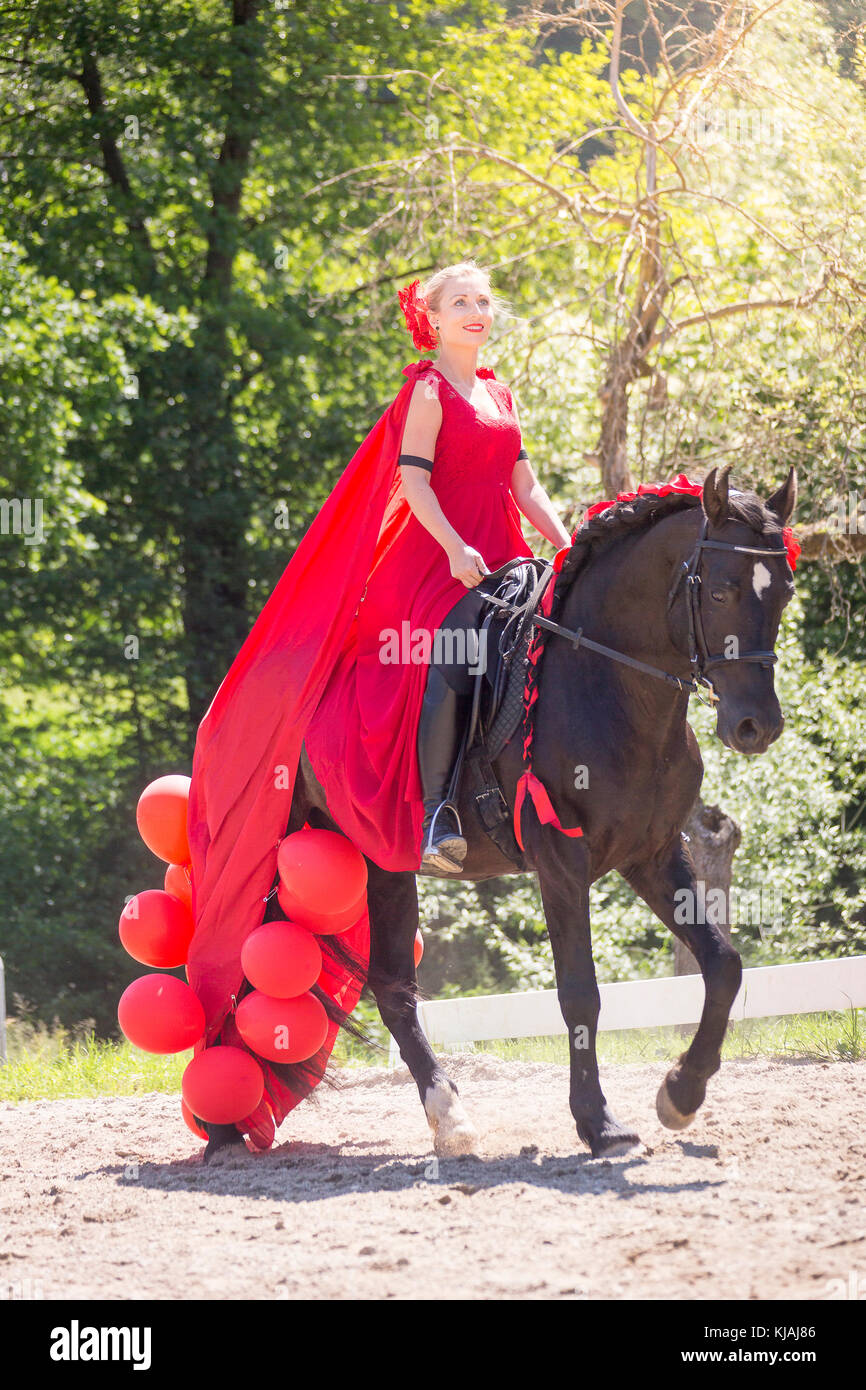 Pure Spanish Horse Andalusian Rider In Red Dress On A Black Stock Photo Alamy