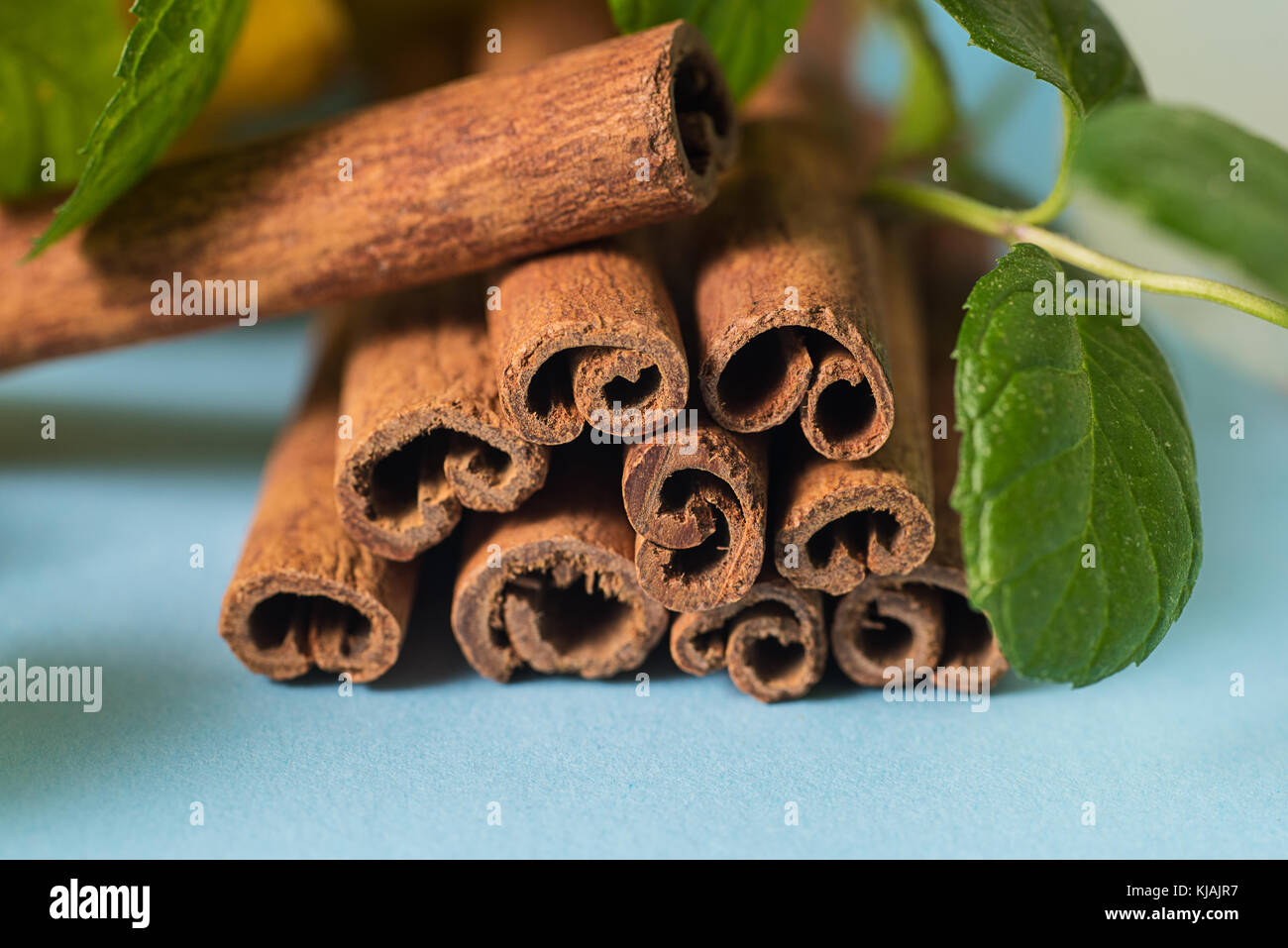 Sticks of cinnamon with mint leaves - Stock Image