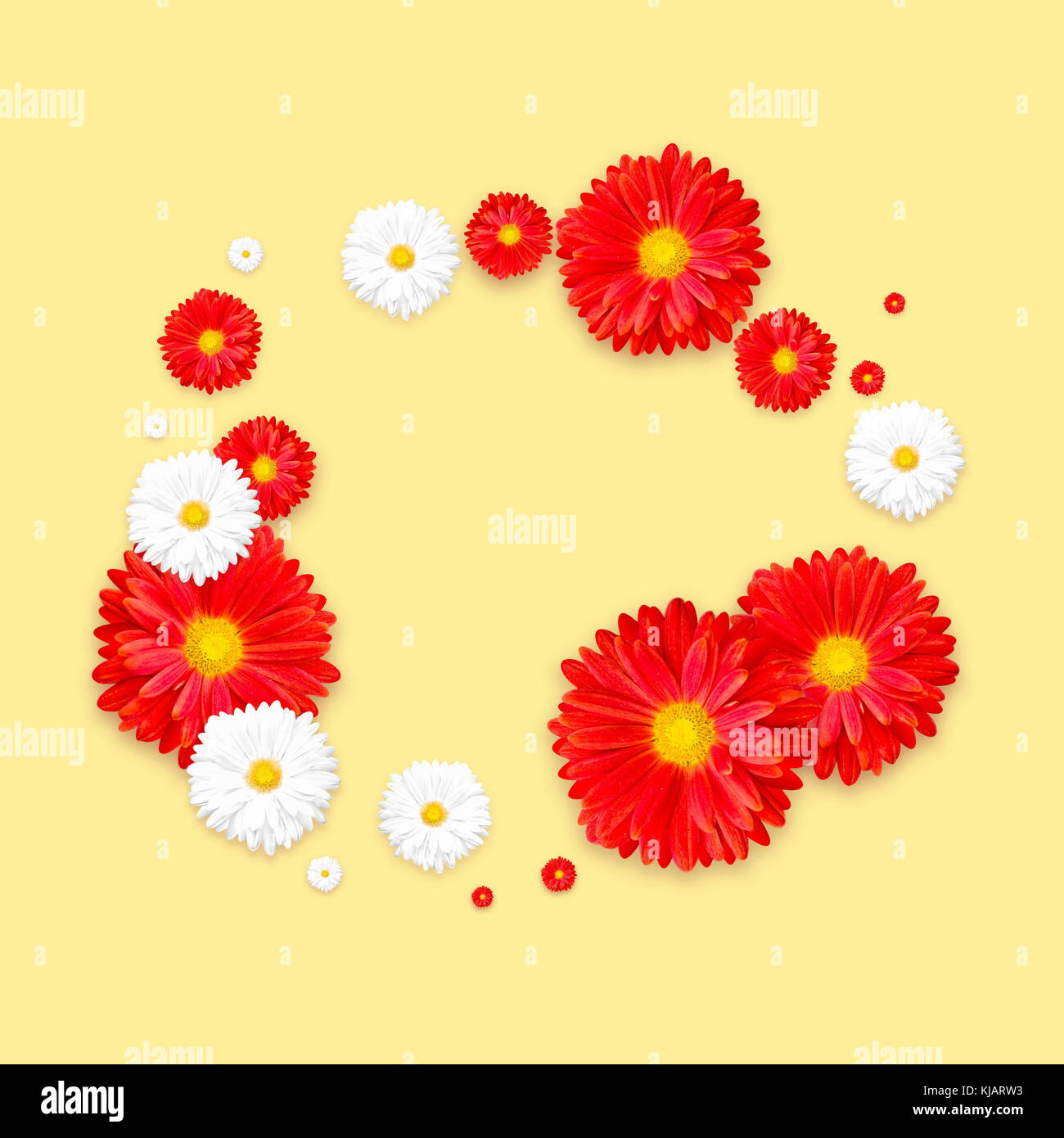 Yellow background with beautiful colorful flower. Wallpaper flyers ...