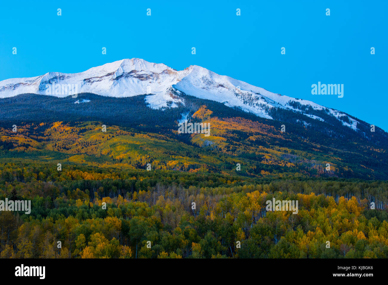 Mount Beckwith Early Morning.  Shot from Kebler Pass near Crested Butte Colorado in the USA - Stock Image