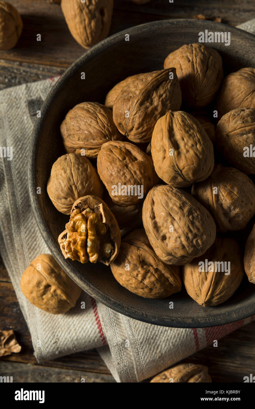 Raw Brown Organic Walnuts Ready to Eat - Stock Image