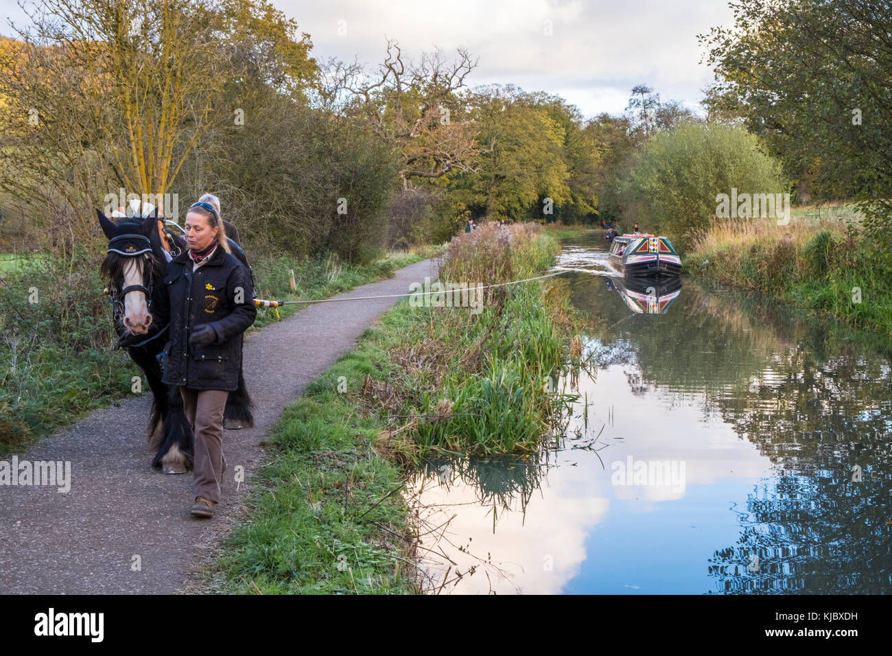 Horse drawn narrow boat. Woman guiding a horse on a towpath while pulling a narrowboat on the Cromford Canal, Derbyshire, - Stock Image