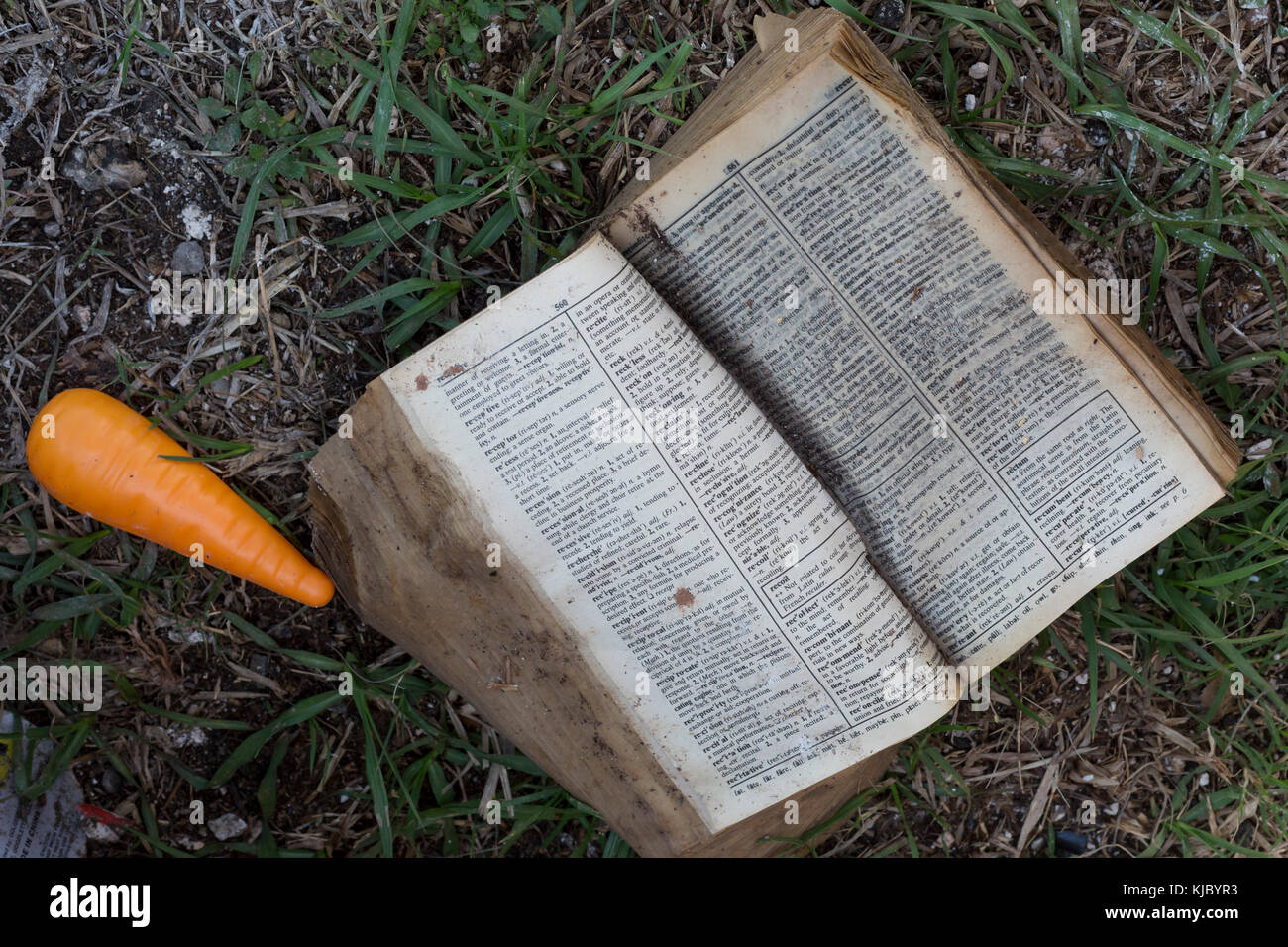 Humble, Texas - A waterlogged dictionary and a toy carrot are among the debris thrown out after the Mana Family - Stock Image